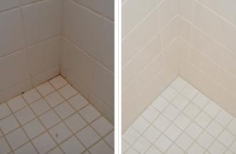 Mold In Shower Room pink mold in the bathroom! - tranquil home